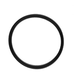Chapin O Ring