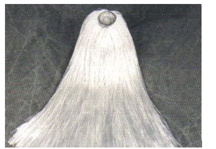 Fiberglass Ring Mop