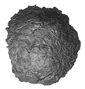 Scofield Fractured Earth Skin