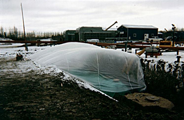 Layfield Canada Ltd. 20' x 30' Clear Poly Tarp