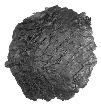 Scofield River Stone Skin